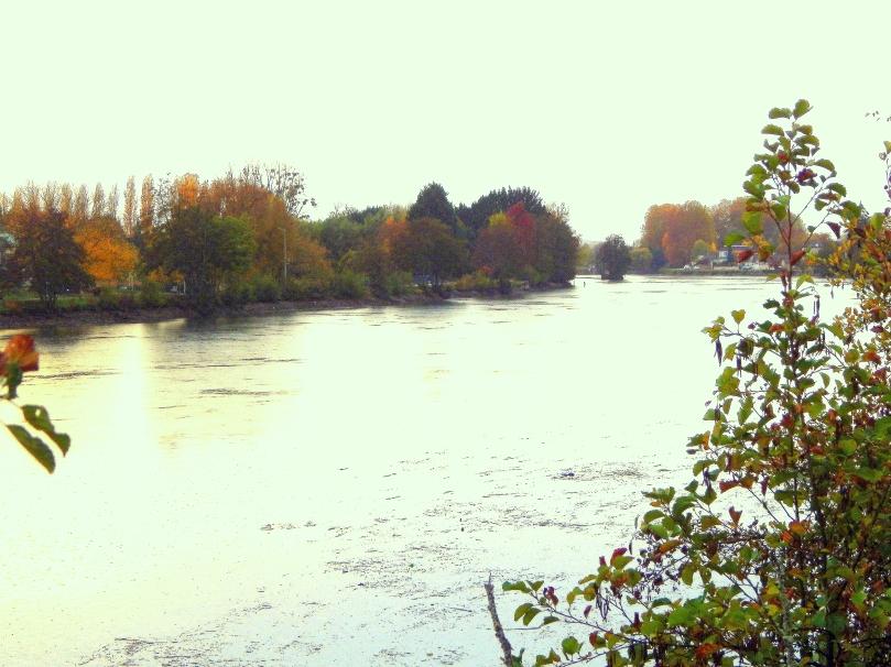 Joigny - Yonne le 10 nov 2018-4.jpg